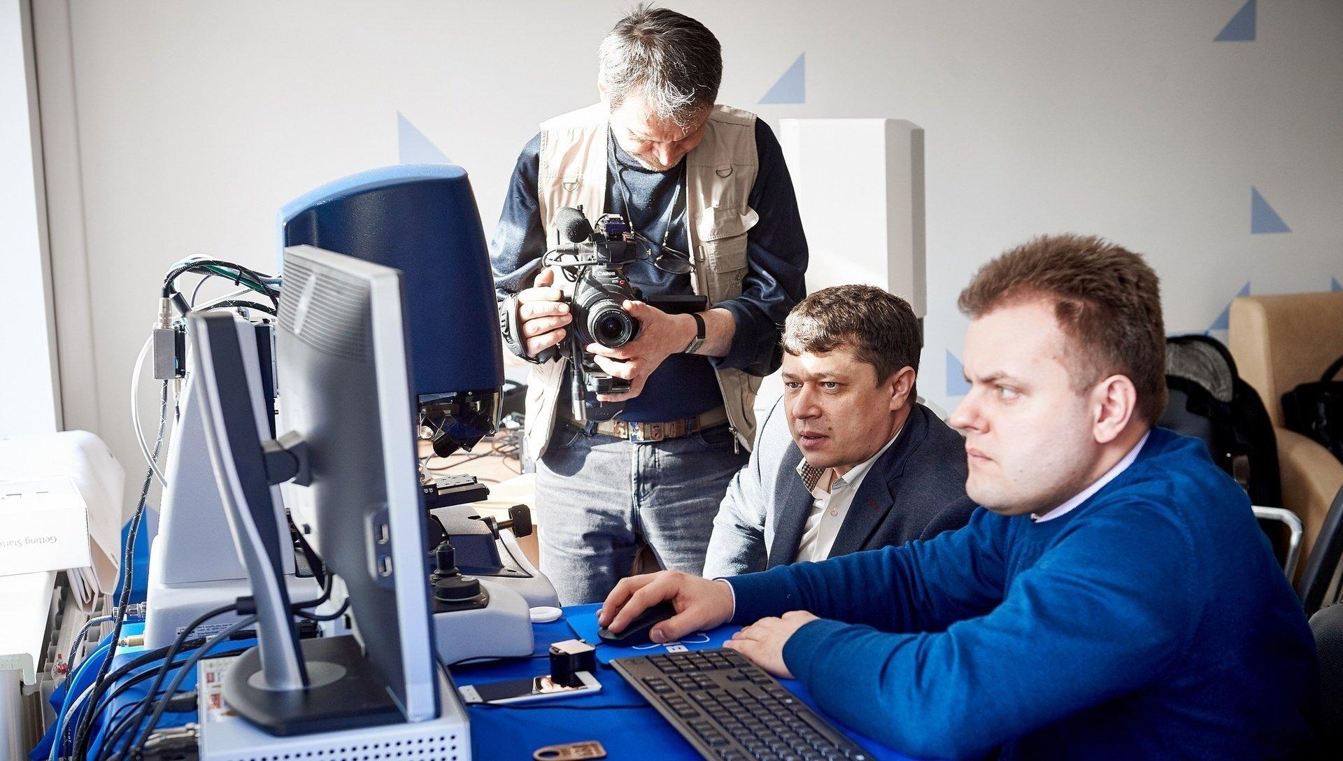 растение армерия второе образование фототехник гренландия невероятно тихое